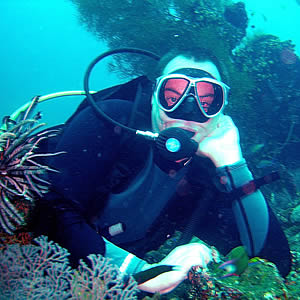 Dive Course Prices & Diving Packages
